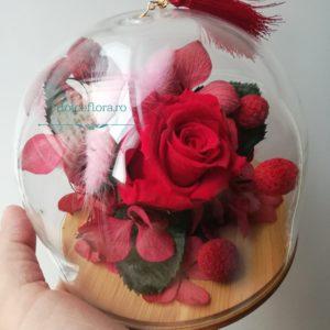 bol de sticlă cu plante stabilizate roșu și roz pe platou de lemn