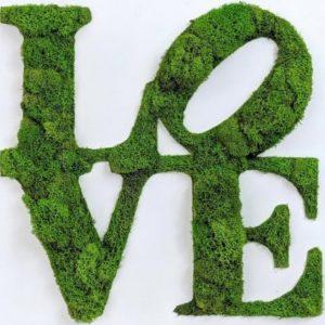 panouri pâsla îmbrăcate în licheni verde mentă