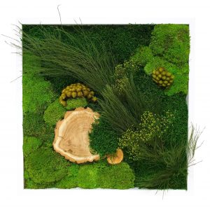 Tablou Forest Wood 50 x 50 cm