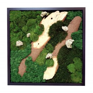 Tablou Forest Rice 50 x 50 cm