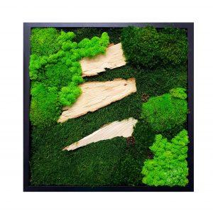 "Tablou ""Forest Bark"" 50 x 50 cm"